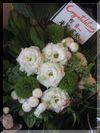 御祝 花7